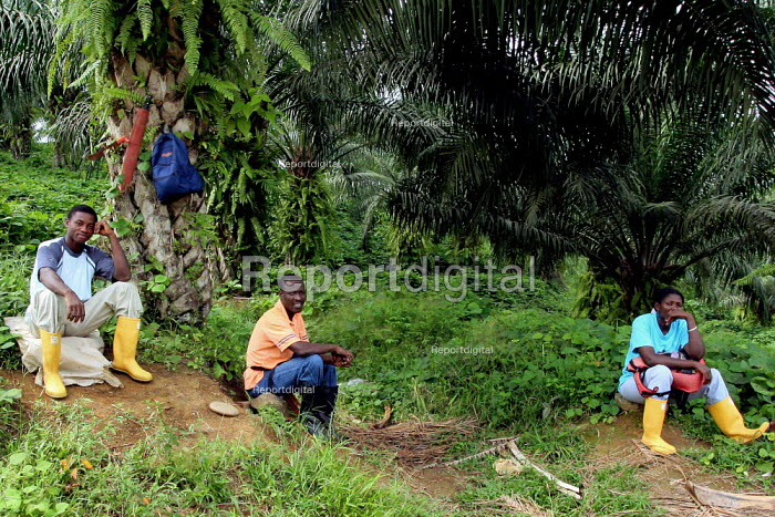 Oil palm workers wait for a bus home at the end of the day. In this area near Tumaco, Afro Colombians have recovered part of their lands, and seek to force palm growers to give up the rest. Colombia - David Bacon - 2006-10-28