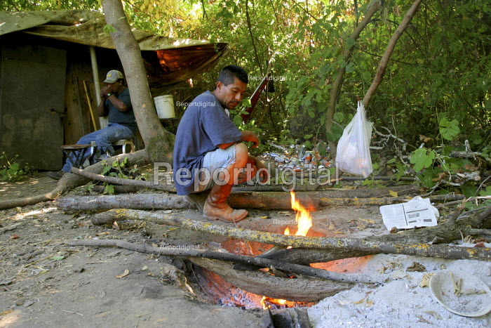 Juan, a Chinanteco migrant farm worker from Oaxaca, makes a fire in front of the shack where he lives with other migrants under the trees in Sonoma County. California USA - David Bacon - 2006-08-05
