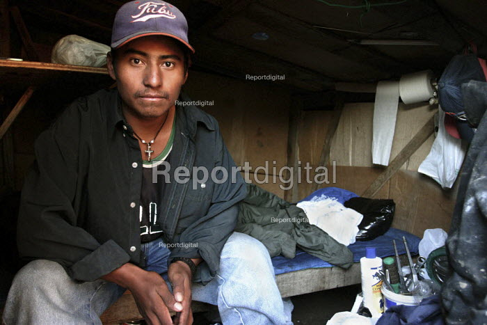Mixtec and Zapotec farm workers from Oaxaca, living in a camp on a hillside outside Delmar. - David Bacon - 2005-02-01