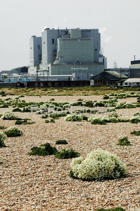 Dungeness, Kent, the country's largest and oldest shingle beach dating back over 800 years.