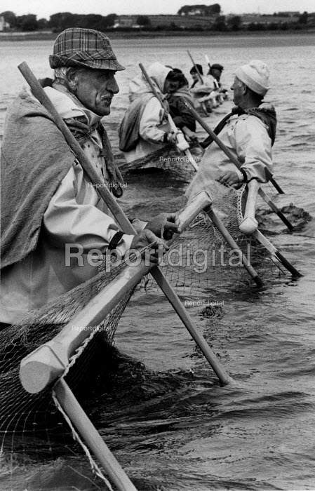 Fishing for salmon with Haaf nets, The River Cree , Solway Firth, Scotland. This a single net is mounted on a wooden frame, which is carried into the channel and held by the fisherman. - David Mansell - 1978-06-12