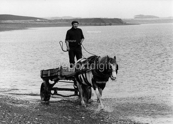 Seacoaler driving a horse and cart, Cresswell, Northumberland - David Mansell - 1977-04-14