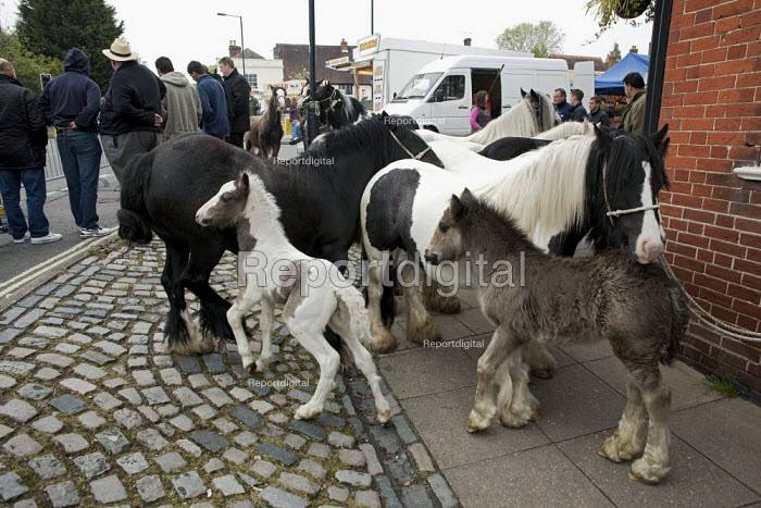 Annual Horse Fair. Wickham Hampshire - David Mansell - 2012-05-21