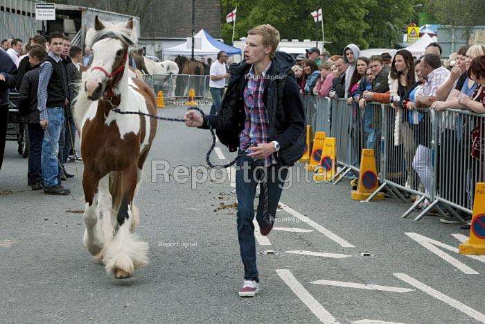 Horse run, Annual Horse Fair. Wickham Hampshire - David Mansell - 2012-05-21