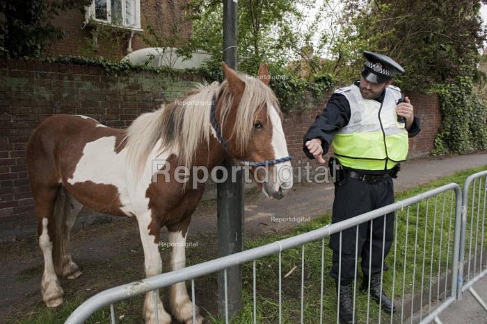 Annual Horse Fair. Wickham Hampshire - David Mansell - 2012-05-21
