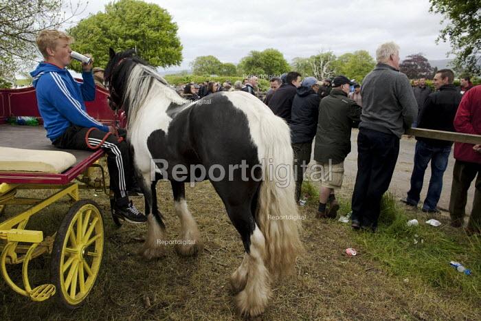 Appleby Horse Fair, Cumbria, watching the horses showing along Flashing Lane - David Mansell - 2015-06-06