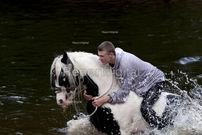 Appleby Horse Fair, Cumbria, washing horses in the River Eden - David Mansell - 2015-06-07