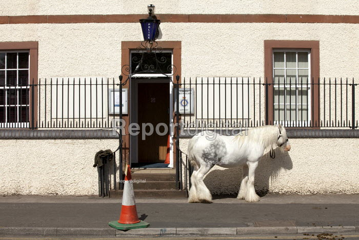 Appleby Horse Fair, a horse is tied up and left outside Appleby Police Station. - David Mansell - 2015-06-07