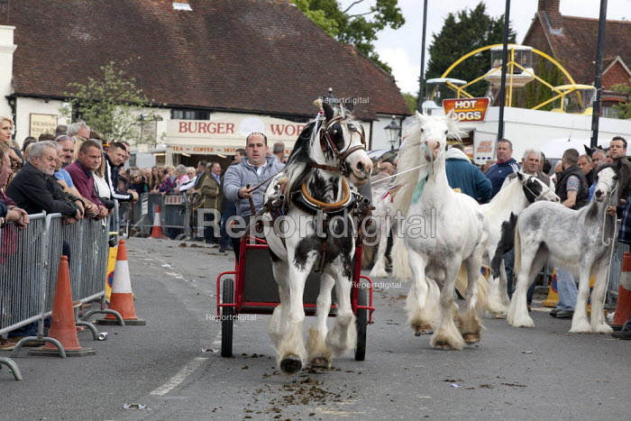 Wickham Horse Fair a traditional one day annual event, Hampshire. Horse dealers showing off their horses. - David Mansell - 2015-05-20