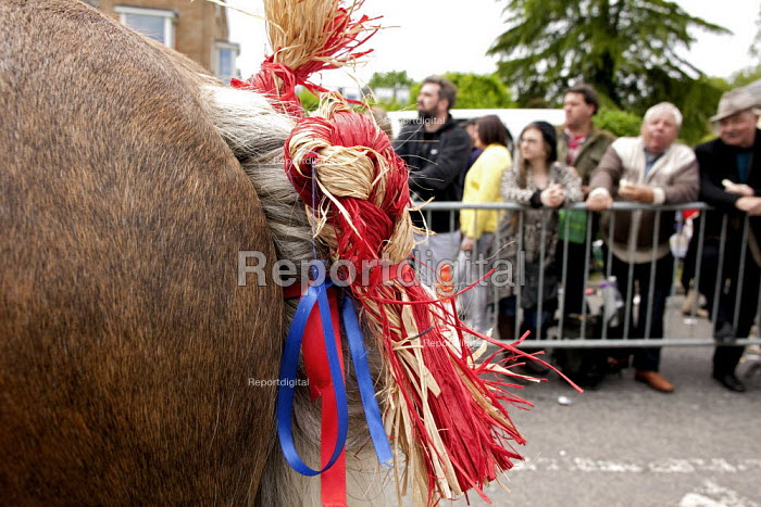 Wickham Horse Fair a traditional one day annual event, Hampshire. Goddard horses with plaited tails with coloured ribbons and raffia - David Mansell - 2015-05-20