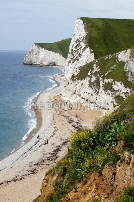 The Jurassic Coast of Dorset, now a World Heritage Site, the cliffs and coast line looking from Durdle Door, westerly towards the chalk cliffs of White Face and Bats Head. - David Mansell - 2005-05-15