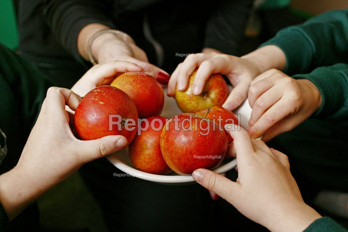 Four and five year old nursery preschool children who attend the Springfield Primary School, Welwyn Garden City, Hertfordshire, learn and practise decision making when having to decide on what fruits they would like to eat during their break time. This helps to develop the child's personal assertiveness and self confidence within small social groups. Children's hands in a bowl of apples. - David Mansell - 2005-12-08