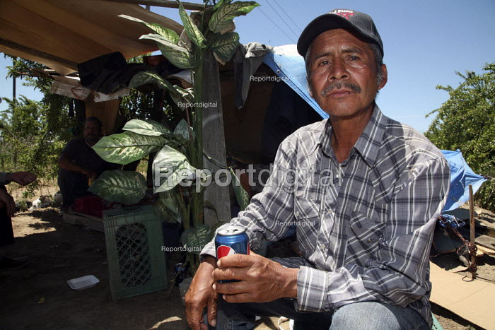 """A migrant Mexican farmworker, who shares a small camp under the trees with two other workers. They have only been able to work a few days in the last few months, and cannot afford accommodation. They call it living """"sin techo,"""" or without a roof. He used to pick coffee on plantations there, but when the price of coffee fell, he couldnt get work and came to the U.S. - David Bacon - 2010-06-04"""