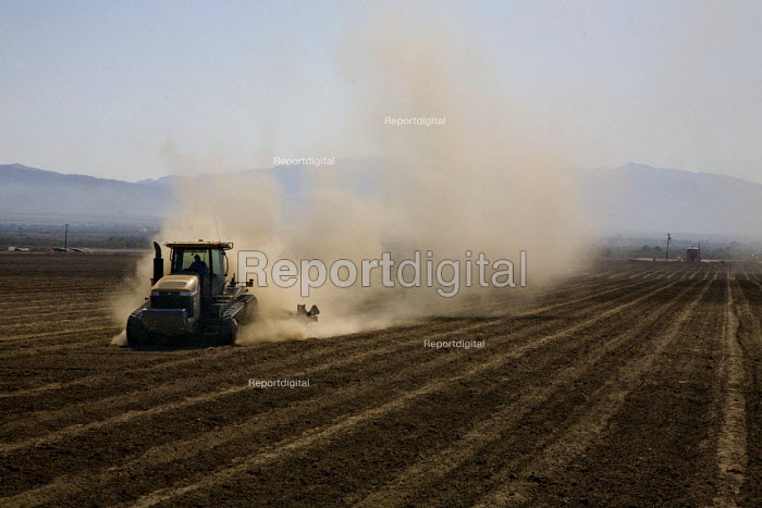 A Caterpillar rubber tracked tractor ploughs a field in... - David Bacon, Dnb120703.jpg