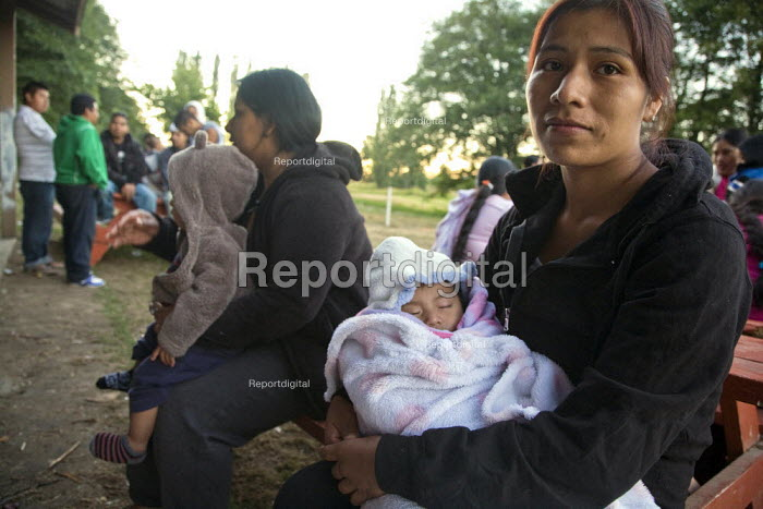 Washington, USA Migrant farmworkers on strike to raise the piece rate for picking, and to try to stop the company from bringing in H2A guest workers from Mexico to do their work. Picketing the camp. Sakuma Farms, a large strawberry grower in Washington. Most workers are Mixtec and Triqui migrants from Oaxaca and southern Mexico. - David Bacon - 2013-07-24