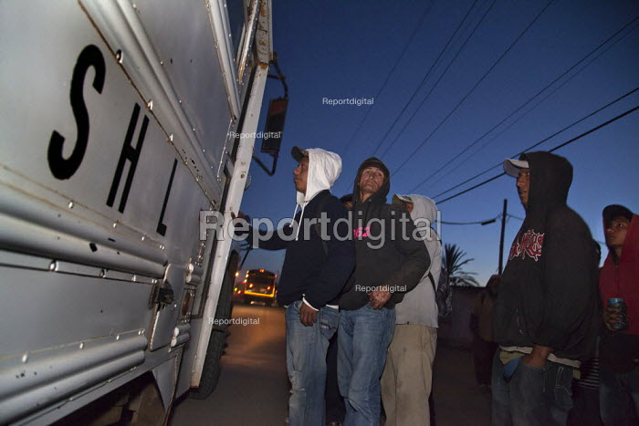 Mexico, Baja California Norte, Farm workers going to work early in the morning. The workers are almost all indigenous Mixtec and Triqui migrants from Oaxaca, in southern Mexico. - David Bacon - 2015-06-05