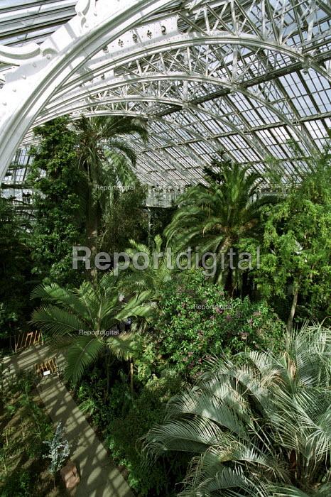 Palm House at Royal Botanic Gardens, Kew - Duncan Phillips - 2006-04-06