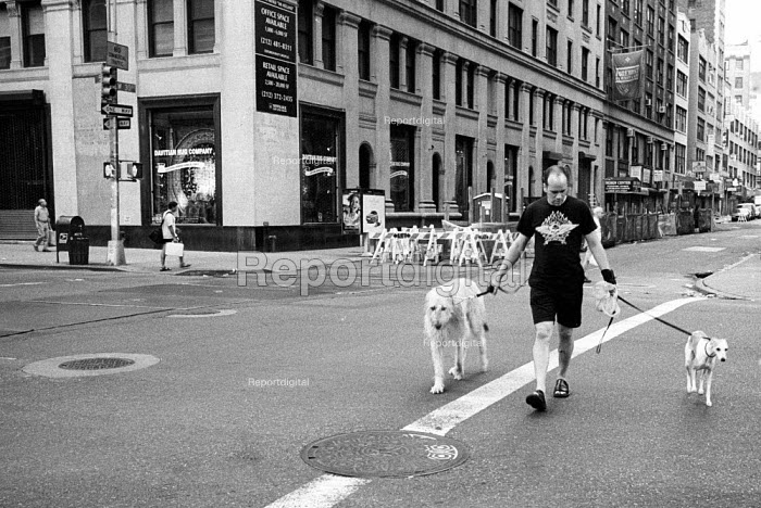 Man walking two dogs, New york City. USA - Duncan Phillips - 2002-08-13