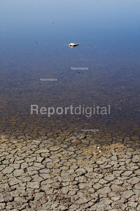 Dead Bird floating in a dried up lake. - Duncan Phillips - 2009-08-26