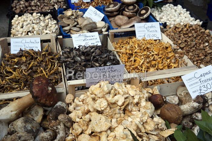 Mushrooms and Fungi, Borough Market, London - Duncan Phillips - 2007-10-19