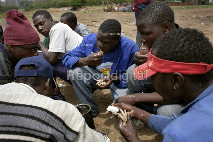 Pretoria, South Africa. Eating chickens feet. Refugees from Zimbabwe near the Marabastad Refugee Reception Centre (Ministry of Home Affairs) in Pretoria where they apply for a South African visa. Because of administrative regulations and the huge amount of refugees from Zimbabwe some of these people wait for months for their visa apply. They live, cook and sleep near the ministry in the open field without any proper facilities. - Felipe Trueba - 2007-11-01