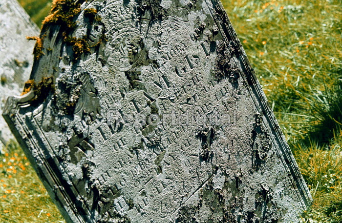 Gravestone in an English churchyard. - Geoff Crawford - 2002-05-12