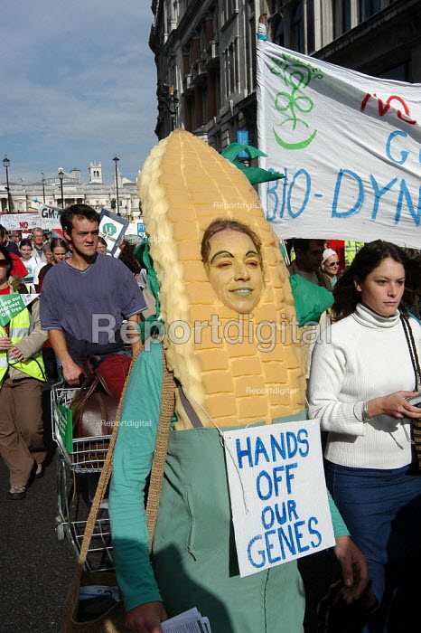 Protester dressed as a corn-on-the cob marches against GM food production in London. placard reads, Hands Off Our Genes. October 13th 2003 - Geoff Crawford - 2003-10-13