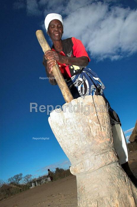 Elinata Kasanga a Zambian farmer pounds grain in her village Balakasau, 300k from Lusaka. - Geoff Crawford - 2005-07-06