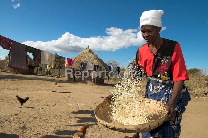 Elinata Kasanga a Zambian farmer sieves grain in her village Balakasau, 300k from Lusaka. - Geoff Crawford - 2005-07-06
