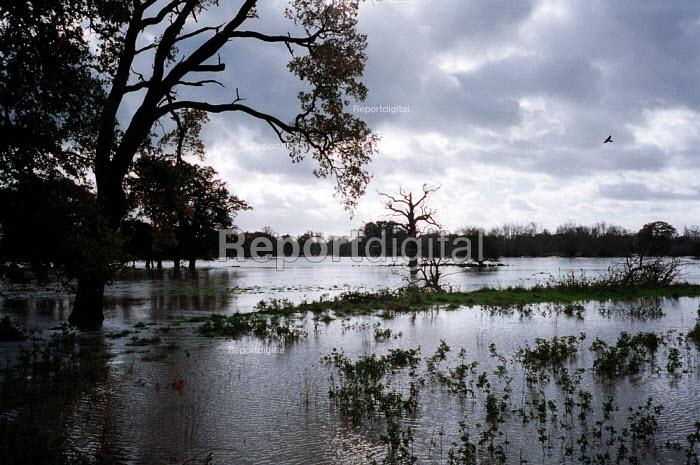 Flooded fields in the countryside Warwickshire. - John Harris - 2000-10-31