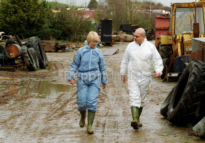 MAFF Vet and Animal Health Officer inspecting a herd of cattle for symptoms of foot and mouth disease on a farm at risk. - John Harris - 2001-03-28