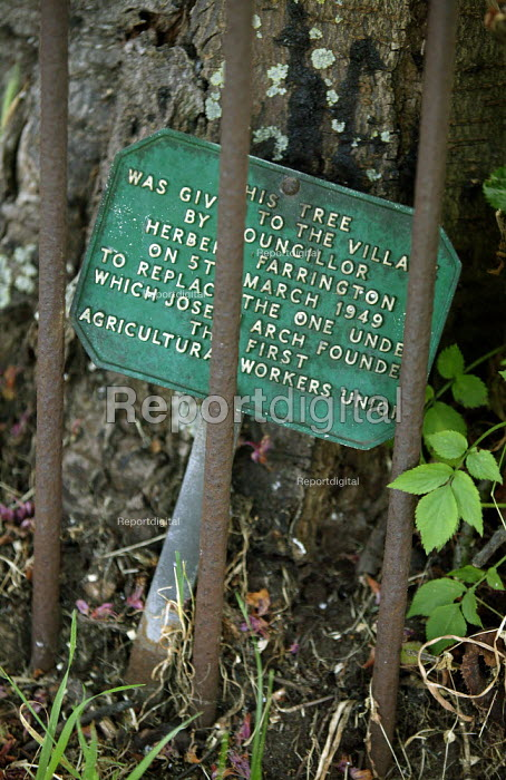 Plaque on the tree under which Joseph Arch held a meeting at which the Agricultural workers trades union was formed. Wellesbourne, Warwickshire. - John Harris - 2004-06-13