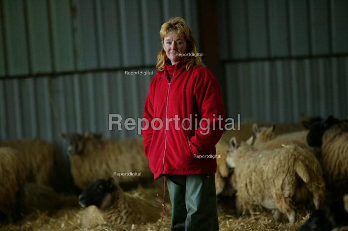 Shepherdess in the lambing shed, Worcestershire - John Harris - 2006-06-03