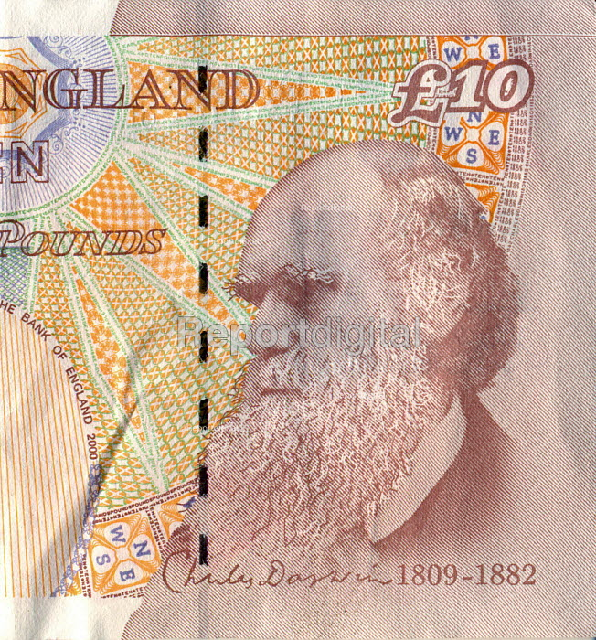 The �10 note, with a portrait of Charles Darwin (1809-1882) on the back. - John Harris - 2009-03-04