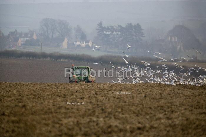 Ploughing a field in Rutland - John Harris - 2009-03-18