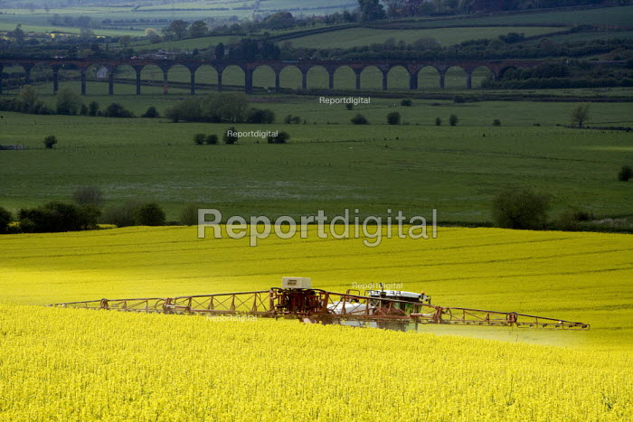 Farmworker spraying oilseed rape with insecticide and fungicide chemicals. Welland Viaduct crosses Welland Valley, Harringworth, Northamptonshire. - John Harris - 2009-04-29