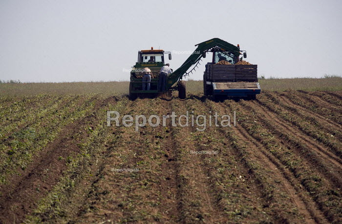 Potato harvester, Warwickshire - John Harris - 2009-07-02