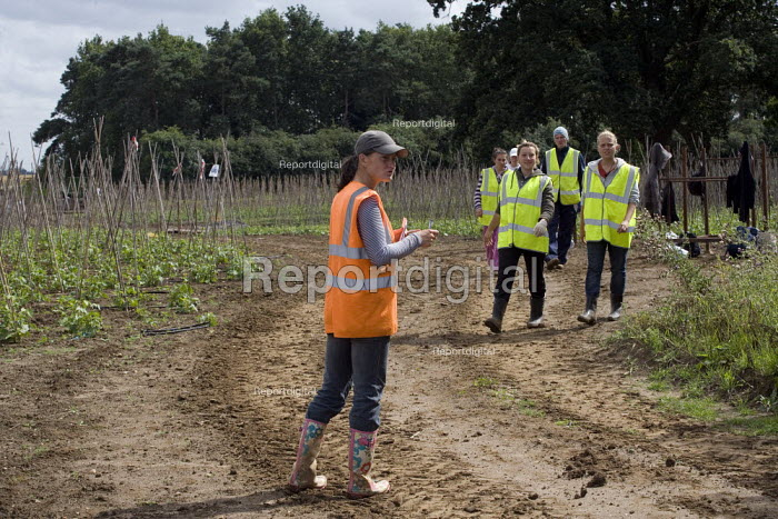 A Lithuanian gangmaster recording the output by tripod, of Bulgarian, Lithuanian, and Polish workers growing runner beans, Warwickshire. - John Harris - 2009-07-22