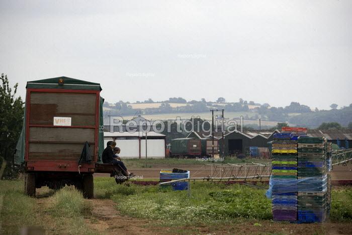 Farmworkers sitting on the trailer take a break from cutting lettuce in the fields on a farm in Warwickshire. - John Harris - 2010-07-16