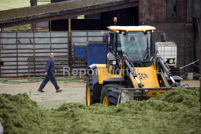Silage making on a farm, filling and rolling the silage heap or clamp with a JCB wheeled loading shovel, Wormleighton, Warwickshire - John Harris - 2012-05-22