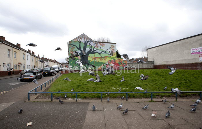 Feral pigeons taking off, a mural of trees and fruit painted onto the end of a terrace. Handsworth, Birmingham - John Harris - 2015-04-01
