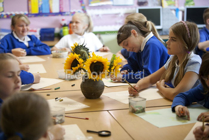 Art class, pupils drawing sunflowers. Primary school, St Richards First School, Evesham, Worcestershire - John Harris - 2015-07-06