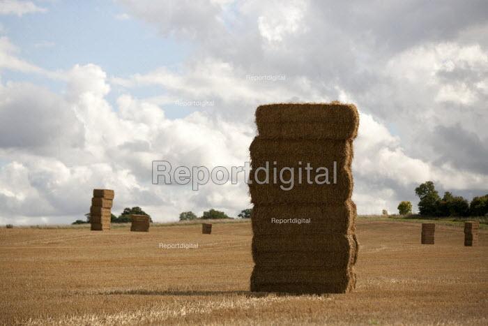 Stack of hay bails Warwickshire - John Harris - 2015-09-12