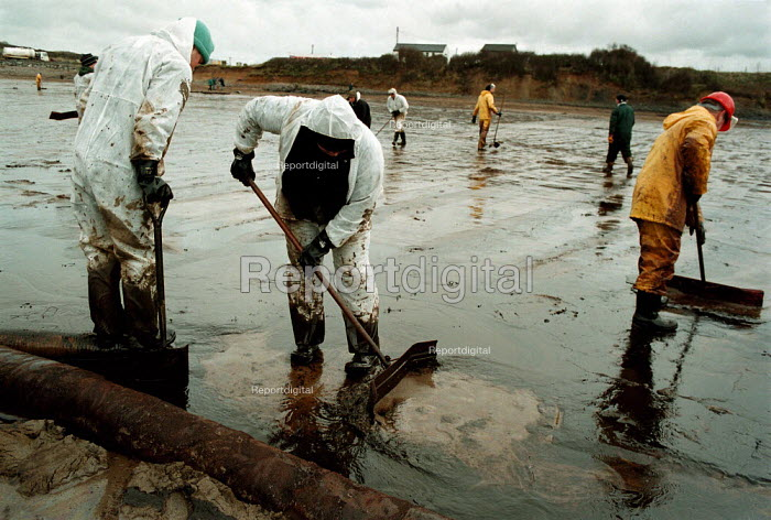 Volunteers and unemployed attempting to remove and clean oil pollution from the beach West Angle Bay Milford Haven Port Sea Empress oil spill - John Harris - 1996-02-22