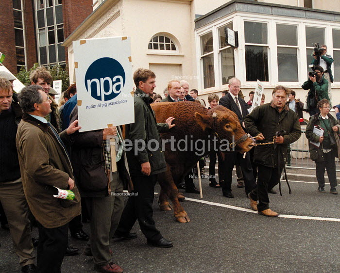 Keep Britain Farming protest by NFU farmers and NPA lead by a bull outside Labour Party Conference 1999 - John Harris - 1999-09-27