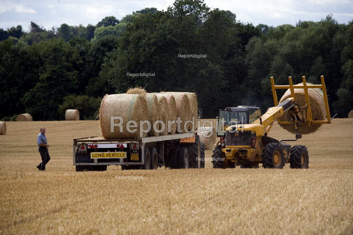 Landworker loading hay bales, using a JCB telescopic handler, tractor and trailer, Warwickshire - John Harris - 2010-07-31