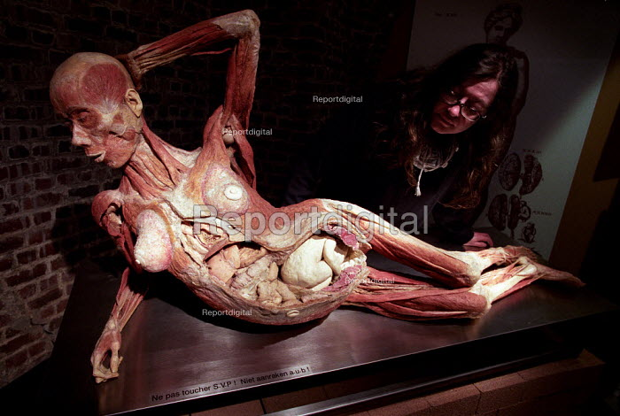 Reclining Woman in the 8th Month of Pregnancy. Human plastinated body at the controversial Korperwelten art exhibition, by Prof. Gunther Von Hagens MD, Brussels, Belgium. - Jess Hurd - 2001-12-12
