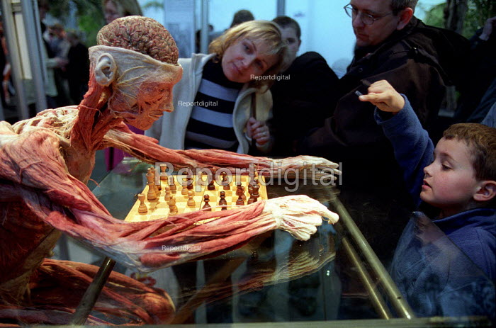 The Chess Player, family and small child. Whole Plastination with dissection of the central and peripheral nervous systems. Donated human plastinated body at Gunther Von Hagens controversial Body Worlds art exhibition, Atlantis Gallery, East London. - Jess Hurd - 2002-03-28
