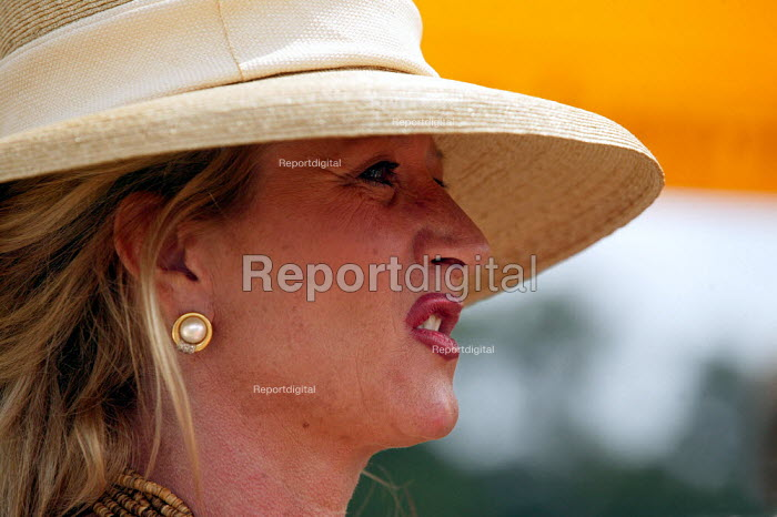 The wealthy enjoy watching The Veuve Clicquot Gold Cup Polo Final, Cowdray Park Polo Club. West Sussex. - Jess Hurd - 2003-07-20