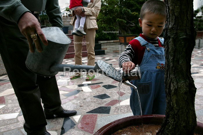 Chinese grandparent waters his traditional bonsai tree with his grandchildren. Wenzhou Nanya model Housing Community, Zhejiang Province, China. - Jess Hurd - 2003-10-26